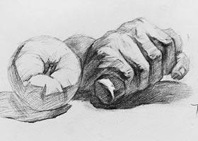 素描A班-2020年11月14日◆秋季班◆新起点画苑-学生作品