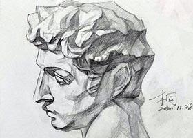 素描A班-2020年11月28日◆秋季班◆新起点画苑-学生作品