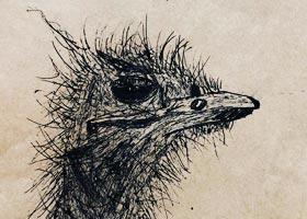 鸵鸟写生-儿童画创想A班-2020年12月31日◆秋季班◆新起点画苑-学生作品