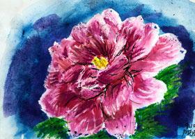 牡丹花写生-儿童画大师A班-2021年9月10日◆秋季班◆新起点画苑-学生作品