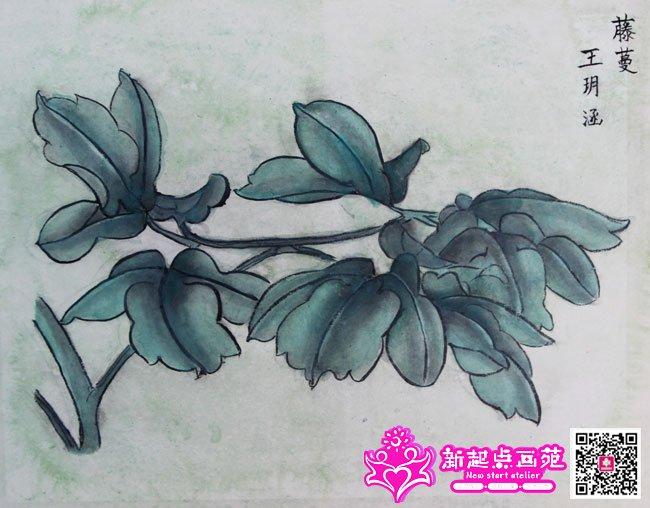 王�h涵(画)第3步
