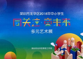 深圳市龙华区2018年中