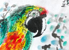 鹦鹉-国画基础班-2019年11月23日 ◆秋季班/高峰店◆ 新起点画苑-学生作品